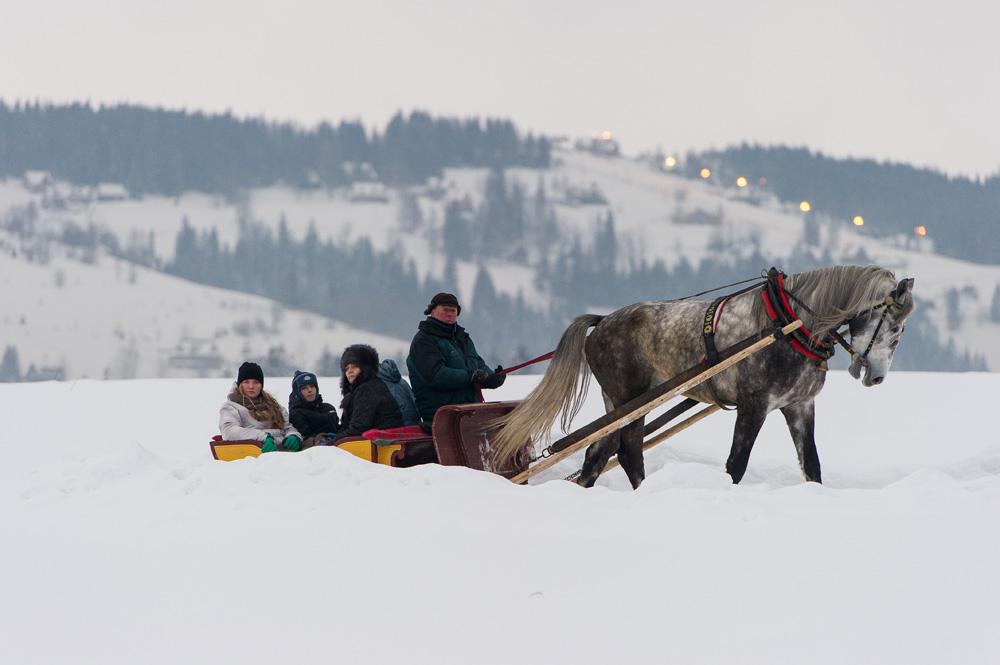 Kuligi w dolinie chochołowskiej
